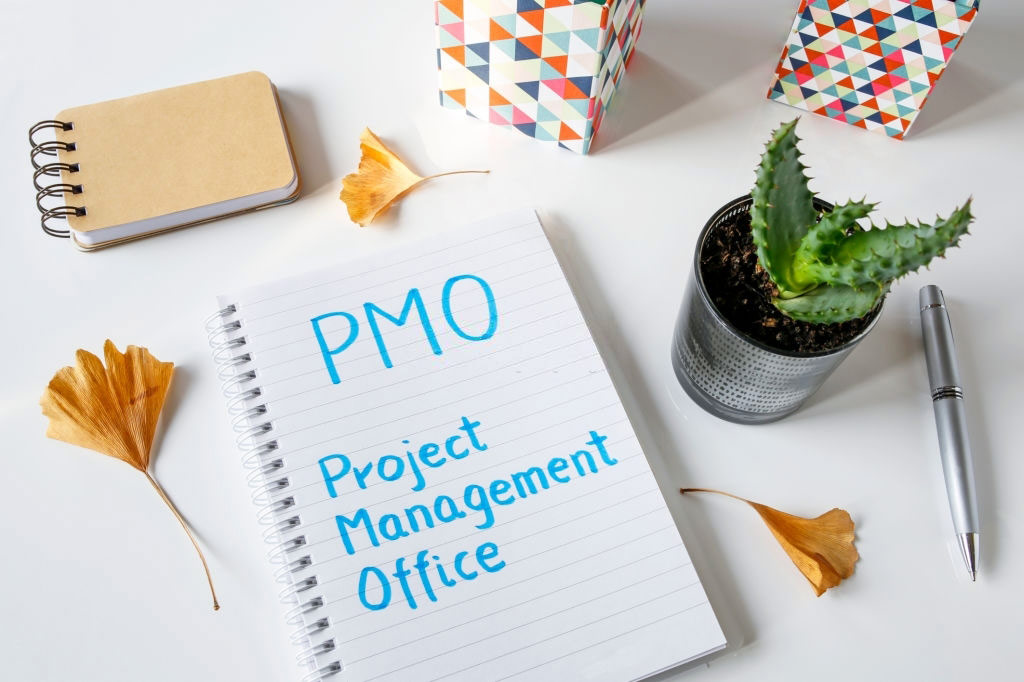 What Does PMO Stand for in Business